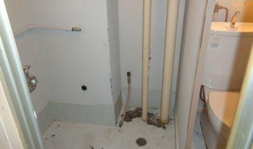 画像:トイレ横